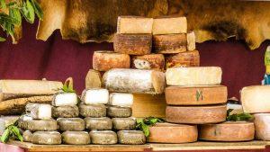 Quelle différence entre fromage de chèvre et de brebis ?